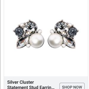 Silver Cluster Statement Earring- Origami Owl NEW